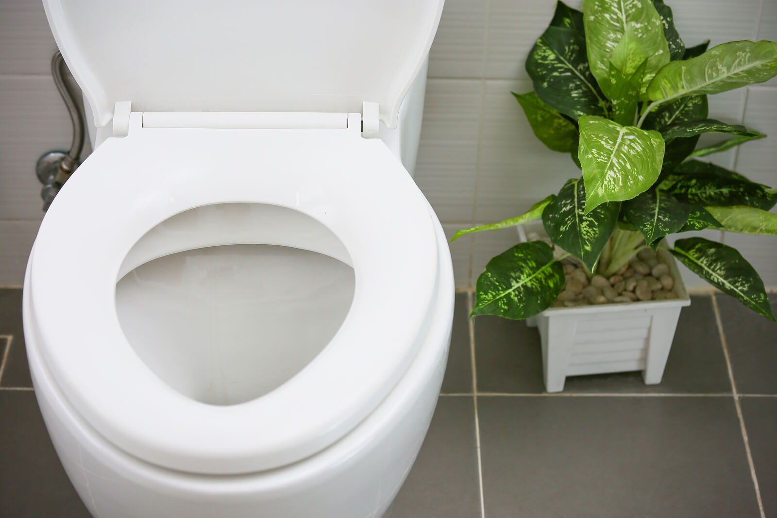 toilet replacement in Sacramento by America's Plumbing